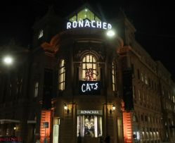 CATS Premiere am 20. September 2019 im Ronacher 039 © Katharina Schiffl